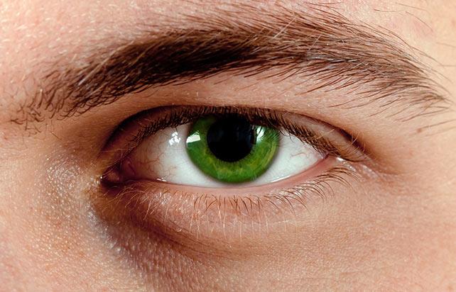 Купить зеленые линзы для глаз
